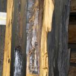 銘木倉庫にある普段見ることのできない銘木です。その3