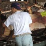 宮崎県の柞木商店で製材その2 第28回岐阜銘青会特別市で購入した木材