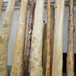 フォレスト神城文化の森屋久杉記念館 神城文化の森 床柱その2