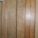屋久杉記念館 屋久杉盤木、板材