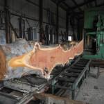 4月26日 宮崎県小林市柞木商店製材所にて製材 ベテランの匠による製材の様子です。 その2