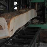 4月26日 宮崎県小林市柞木商店製材所にて製材 ベテランの匠による製材の様子です。 その3