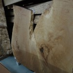 フォレスト神城文化の森ショールーム屋久杉記念館 銘木の展示 その2