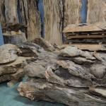 フォレスト神城文化の森ショールーム希の百貨店ページのご紹介その5