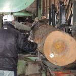 鹿児島県木材銘木市場協同組合 第1951回 鹿児島素材市で購入したクロマツの製材を宮崎県小林市の柞木商店様で行いました 3日目