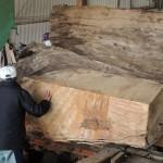 鹿児島銘木市 第233回銘木入札会で購入した屋久杉の製材 その4