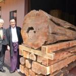 神城文化の森 希の百貨店にてアララギ(一位)を国宝 青井阿蘇神社へ寄付をさせていただきました。