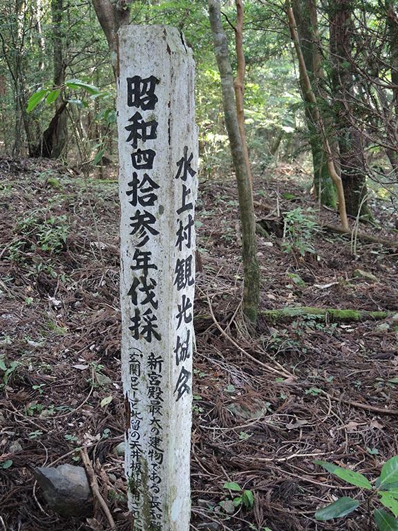 皇居に使われた市房杉伐採跡地