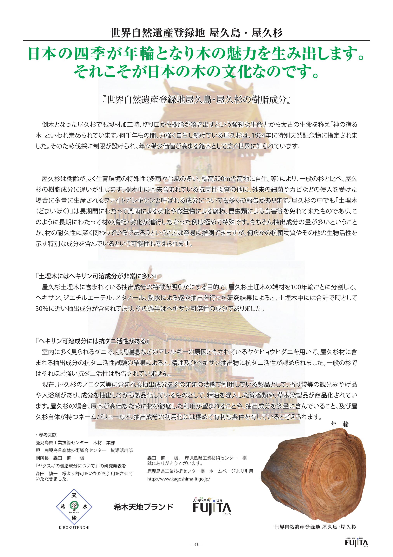 世界自然遺産登録地屋久島・屋久杉